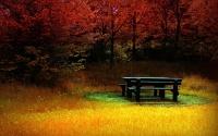 картинки огненная осень