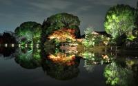 картинки ночная япония