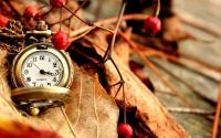 картинки золотые часы на ветке