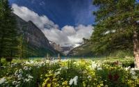 картинки национальный парк банф