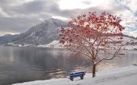 картинки начало зимы
