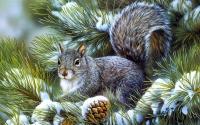 картинки белка в зимнем лесу