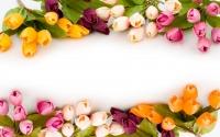 картинки в обрамлении цветов
