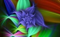 картинки красочный цветок