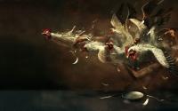 картинки сумасшедшие курицы