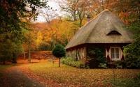 картинки домик в лесу