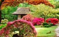 картинки японский сад