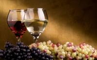 картинки виноградные вина