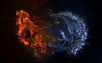 картинки огненная и водяная птица
