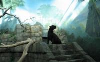 картинки задумчивая пантера