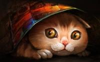 картинки портрет кошки
