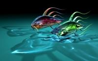 картинки рыбья гонка