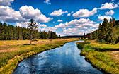 Реки и ручьи